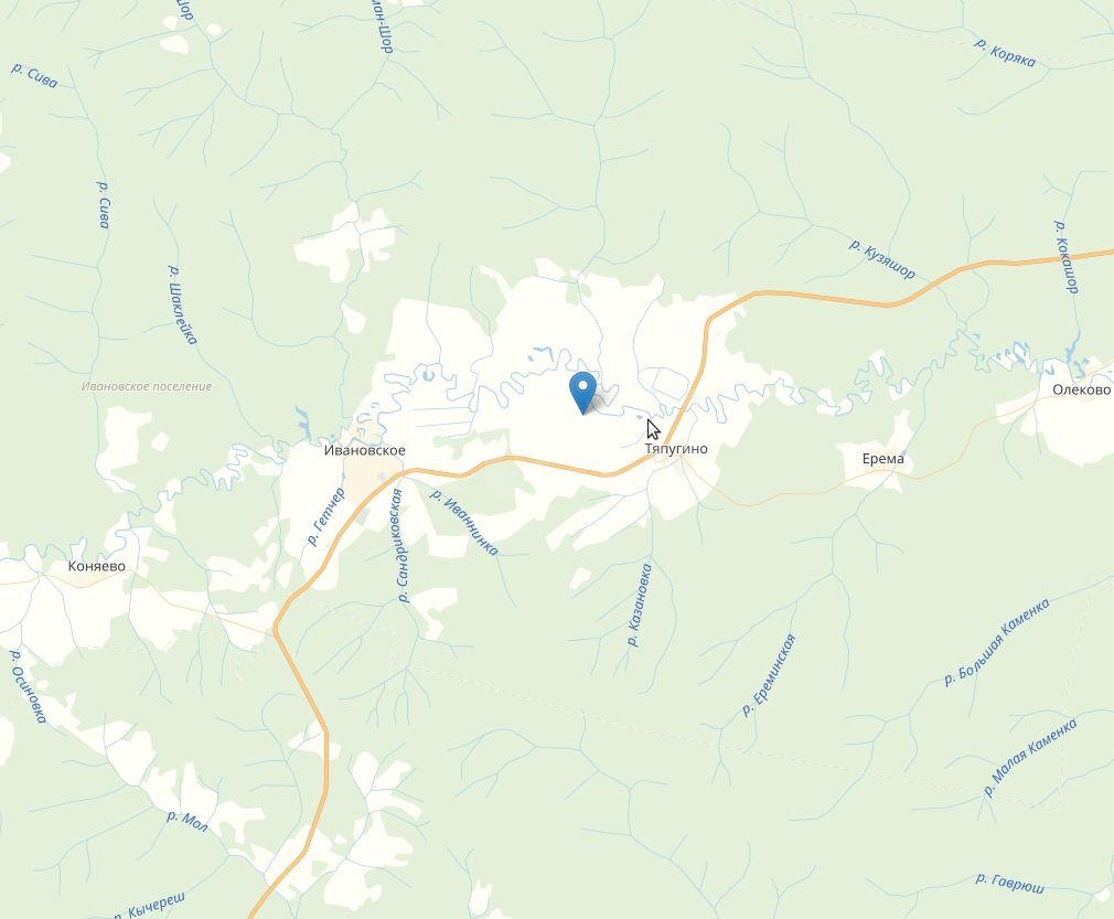 земельный участок 96,2 сот., ровный, сухой, прямоугольной формы. пермский край, р-н ил...