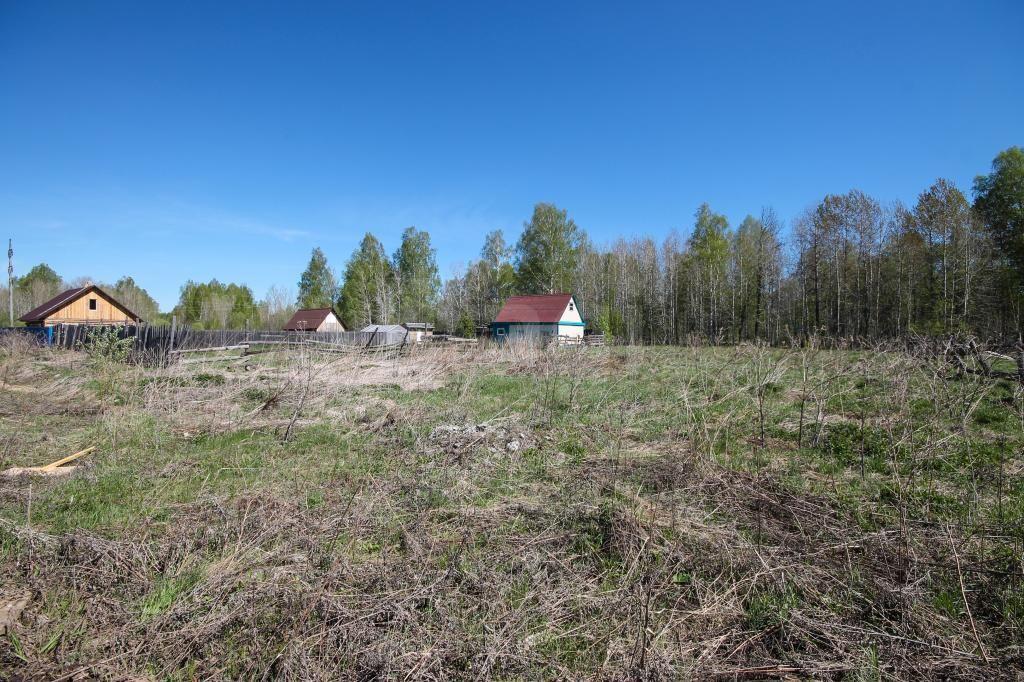 аренда земельного участка в тобольске упавшим