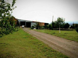 Продажа бизнеса в красноярске ферма создать в excel объявление отрывное уроки